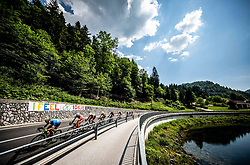 Peloton near Idrija during 3rd Stage of 26th Tour of Slovenia 2019 cycling race between Zalec and Idrija (169,8 km), on June 21, 2019 in Slovenia. Photo by Vid Ponikvar / Sportida
