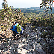 Climbers descend down at rocky and steep section of Mweka Trail on Mt Kilimanjaro.