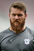 Cardiff City's Aron Gunnarsson