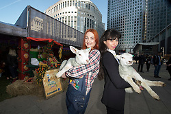 (c) Licensed to London News Pictures. 09/04/2014 London, UK. Alex James from Blur, hosts Farm Heroes Saga #BeAFarmHero pop-up farm event at Canary Wharf to celebrate the launch of the mobile game, which is now available.  A city worker holds one of the lambs. credit Simon Ford/LNP