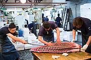 Hideto Takeda, Katsuhiko Watanabe and Masakazu Sato carrying a tuna at the Tsukiji Market, Tokyo, Japan