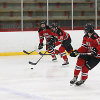 Men's Ice Hockey: Lawrence University Vikings vs. Lake Forest College Foresters