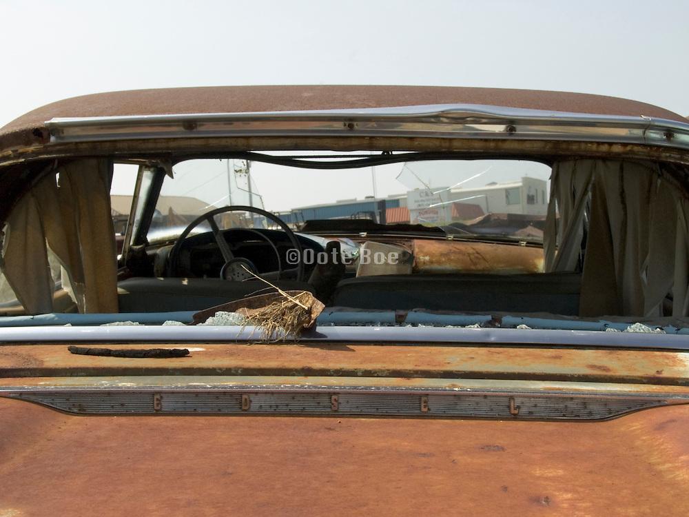 back view of classic car sitting in a junkyard