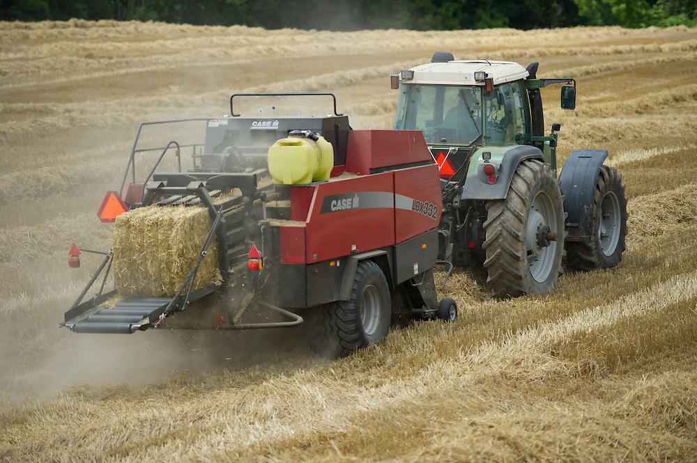 Grain Producer harvesting crop