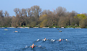 Barnes, Greater London, United Kingdom. General View, GV of the crews moving along Dukes Meadows during the    2014 Head of the River Race, Mortlake to Putney, Championship Course River Thames;  Saturday   29/03/2014   [Mandatory Credit; Peter SPURRIER/Intersport Images].