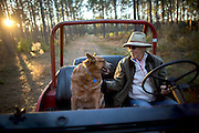 OLIVER, GA - DEC., 15, 2016: Lynda Beam and her Australian Healer Lila drive through a tract of long leaf pine on her TooHolly farm, Thursday, December 15, 2016, in Oliver, Ga. (Photo by Stephen B. Morton for Georgia Forestry Magazine)