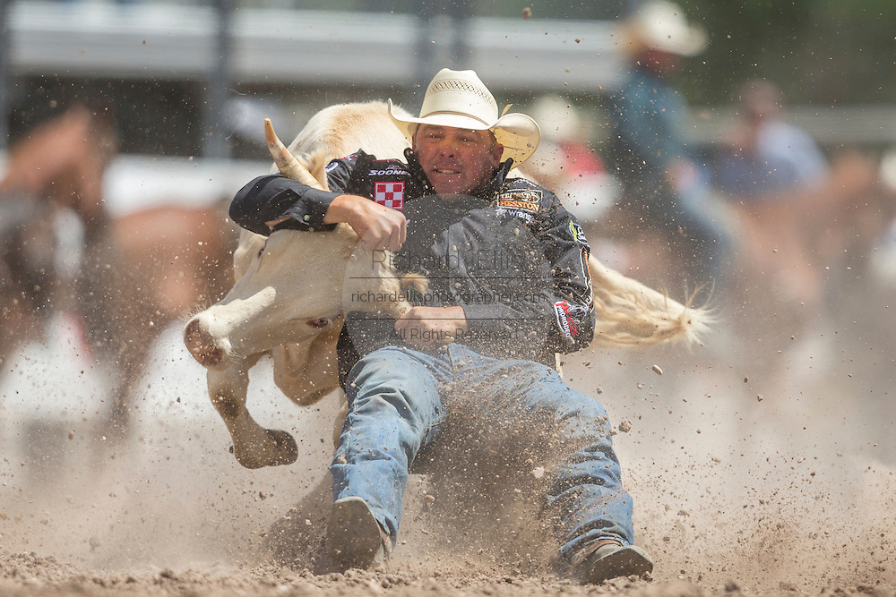 Steer Wrestler K.C. Jones of Decatur, Texas grabs the horns of a steer at the Cheyenne Frontier Days rodeo at Frontier Park Arena July 24, 2015 in Cheyenne, Wyoming. Frontier Days celebrates the cowboy traditions of the west with a rodeo, parade and fair.