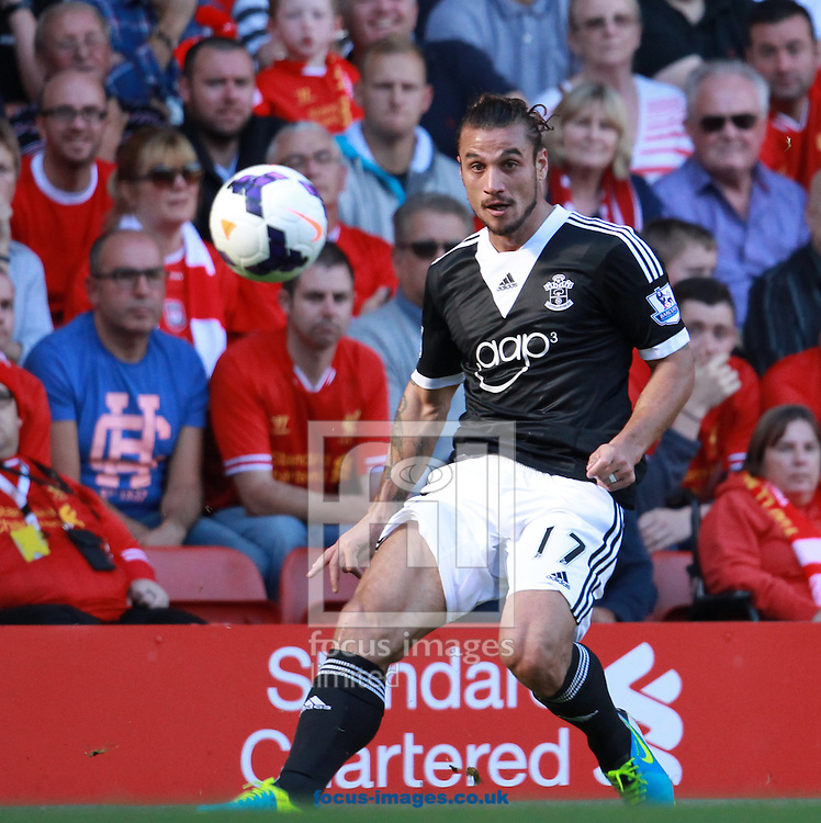 Picture by John Rainford/Focus Images Ltd +44 7506 538356<br /> 21/09/2013<br /> Dani Osvaldo of Southampton during the Barclays Premier League match at Anfield, Liverpool.