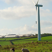 Electrical generating wind turbines in wind farms on the top of the English Pennine Hills surrounded by sheep and adjacent to a farm.