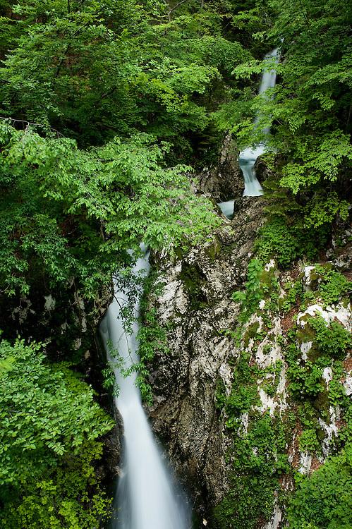 River Lepenjica, cascades<br /> Triglav National Park, Slovenia<br /> June 2009