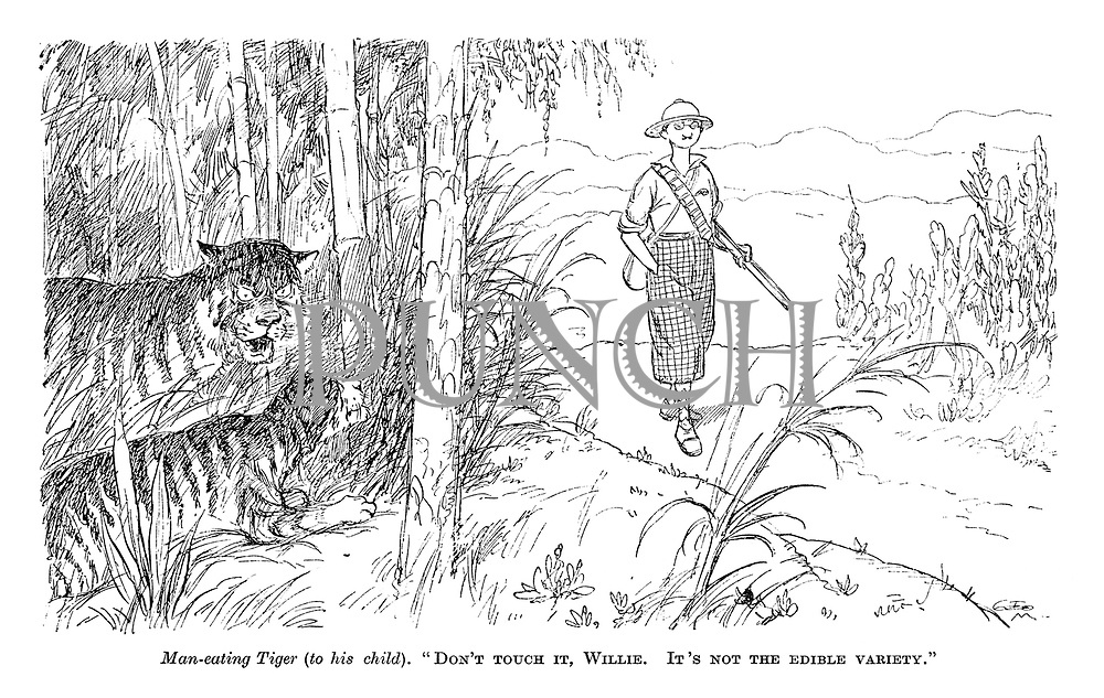 "Man-Eating Tiger (to his child). ""Don't touch it, Willie. It's not the edible variety."""