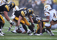 September 3, 2011: Iowa Hawkeyes tight end Brad Herman (39) tries to grab a lose ball after a fumble by Iowa Hawkeyes running back Marcus Coker (34)  during the first half of the game between the Tennessee Tech Golden Eagles and the Iowa Hawkeyes at Kinnick Stadium in Iowa City, Iowa on Saturday, September 3, 2011. Iowa defeated Tennessee Tech 34-7 in a game stopped at one point due to lightning and rain.
