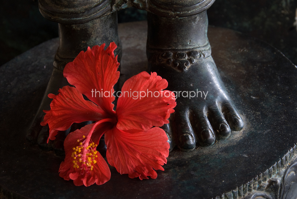 A red hibiscus flower placed at the foot of a metal Buddha statue, Ubud, Bali