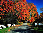 Country road, pawlet,vt in fall