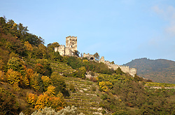 Wachau Valley, Austria:  A medieval ruin, the Fortress of Hinterhaus, overlooks the town of Spitz on the Danube River between Melk and Durnstein.  This is a major wine-growing region; note the terraced vineyards.