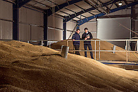 Portrait of Grain buyer and farmer standing above 40,000 tons of grain in one of their storage facilities. This was taken for the annual report and marketing for the animal feed company that buys the grain.<br /> Corporate report photographer.