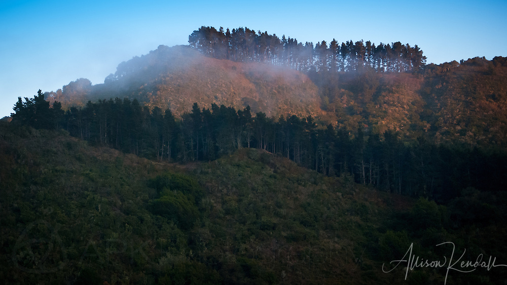 Fog drifts into Carmel Valley at sunset, where forested mountains border the coastline