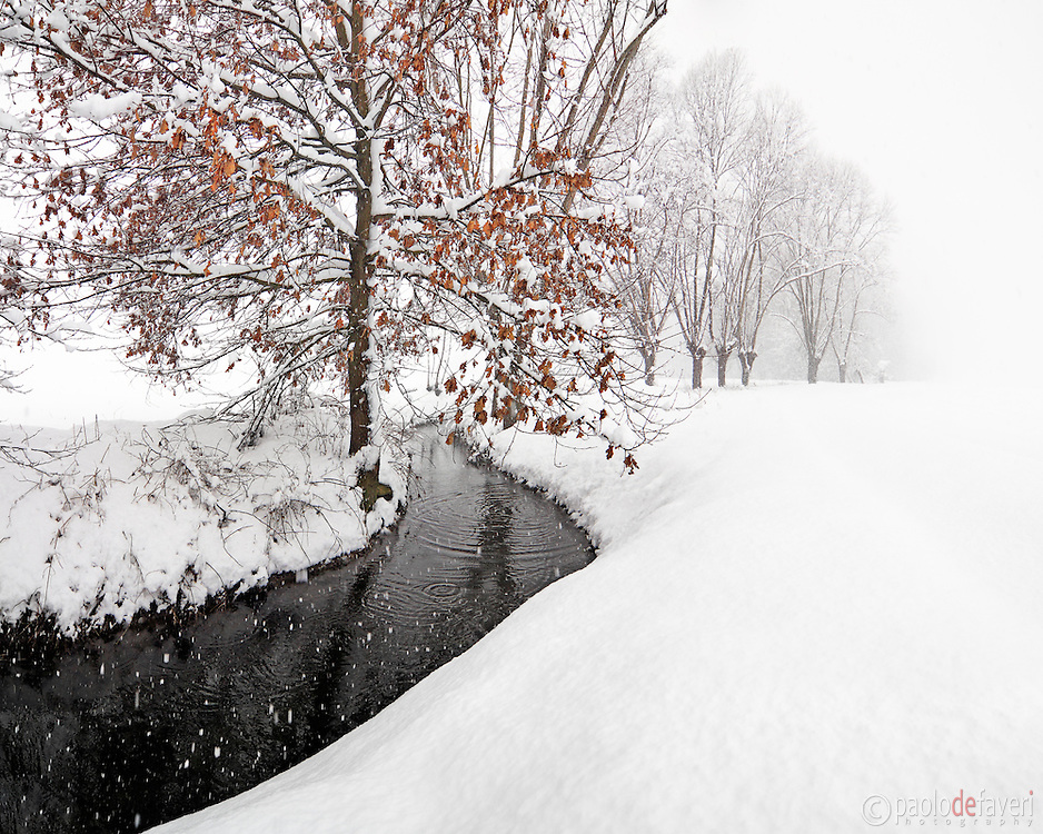 Winter 2009 was a really  old fashioned winter, like those we were used to have 20 years ago: heavy and frequent snowfalls, haze and icy cold temperatures. Just the perfect conditions for some highly graphical, simple and eyecatching countryside compositions. This picture was taken early in the morning at the beginning of January, in the fields close to my home town of Scalenghe in Piedmont, Italy.