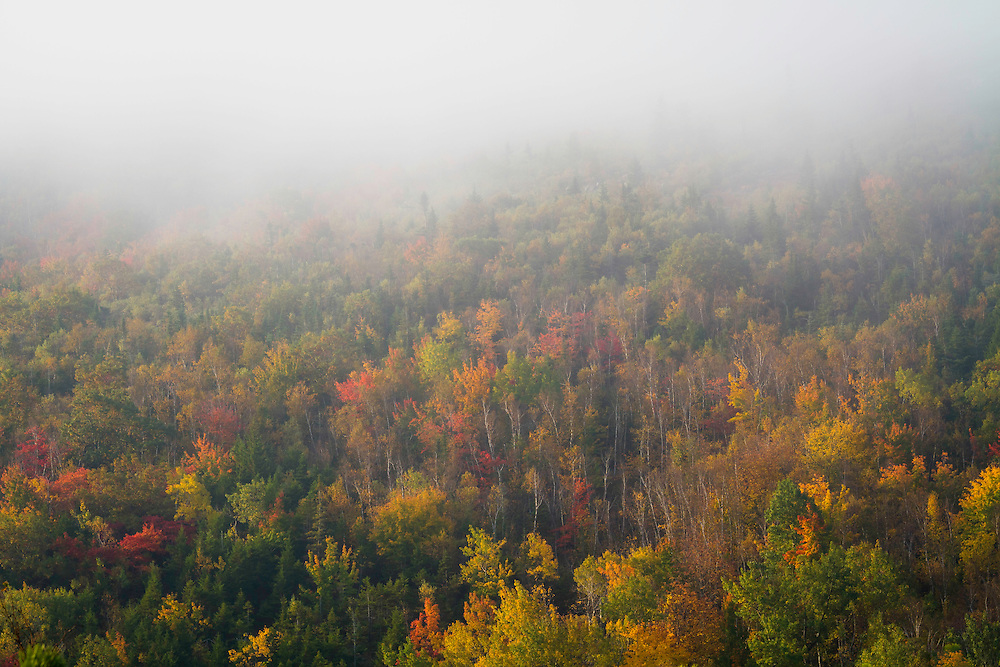 Fog rolls through the hills atop Acadia National Park's Cadillac Mountain as the Fall colors shine bright.