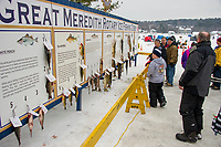 "Some sizable fish adorned the ""wall"" on Saturday afternoon during the Great Meredith Rotary Ice Fishing Derby.  (Karen Bobotas/for the Laconia Daily Sun)"