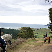 People enjoying a horse ride around the countryside at Happy Valley Adventures, Cable Bay Road. Nelson New Zealand. 30th January  2011. Photo Tim Clayton..