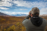 A visitor uses binoculars to scan the tundra for wildlife in Denali National Park, Alaska.