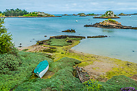 green alga Brehat island in brittany cotes d armor France