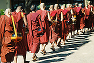 Monks walking in a row to breakfast, Yangon Burma Myanmar
