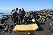 """Kids Save Baby Beluga Whale Who Washed Up On Shore <br /> <br /> While vacationing on the shores of the St. Lawrence River, in Canada, a family received an unexpected visitor: a baby beluga whale. The calf, a female who was likely born just hours earlier, had lost her mother. The boys who had stumbled upon her scrambled to save her life. <br /> <br /> """"We dug a hole so that water would accumulate and its skin would hydrate,"""" 15-year-old Nicholas Milliard, who first found the calf with his younger brothers, told CBC News. """"Every five minutes we got it a bucket of water. The water level was dropping, and it was becoming more and more difficult to get water."""" <br /> <br /> It doesn't happen very often that humans meddle with sea life and save a life — too often we've see the opposite happen. But in this case, the Quebec family was able to stabilize the baby beluga until help could arrive.<br /> Researchers with the Group for Research and Education on Marine Mammals (GREMM) arrived to carefully move the ailing baby back into the waters, near another pod of beluga whales <br /> <br /> The hope, as GREMM president told Le Devoir, was that one of the other females might be induced to feed her. Sadly, most recent reports suggest it has not yet happened — which makes the situation particularly precarious for the baby beluga.<br /> <br /> Beluga whales nurse their young for around two years. This baby, just days old, is desperately in need of a lactating mother to give her a vital start in life.<br /> <br /> """"For now, we do not yet know the outcome of the story,"""" Michaud told Le Devoir.<br /> <br /> The calf's survival is particularly vital, as the beluga whale population ebbs to unprecedented levels in the St. Lawrence region.<br /> <br /> The area, Michaud notes, once boasted thousands of beluga whales. Today, the population is estimated at less than 900. Much of that decimation, according to the World Wildlife Fund of Canada, is due to the river's rising pollution levels.<"""
