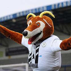 TELFORD COPYRIGHT MIKE SHERIDAN Telford mascot Bobby Buck during the Vanarama Conference North fixture between AFC Telford United and Alfreton Town at the New Bucks Head Stadium on Thursday, December 26, 2019.<br /> <br /> Picture credit: Mike Sheridan/Ultrapress<br /> <br /> MS201920-036