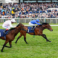 Basem - Silvestre De Sousa wins from Made with Love - Andrea Atzeni<br /> The Swan At Lavenham Wood Ditton Stakes (Bobis Race)<br /> Newmarket 17/4/2014.<br /> &copy;cranhamphoto.com