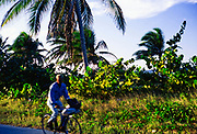 Man cycling past tropical vegetetaion by the coast Cayman Brac, Cayman Islands, West Indies c 1990