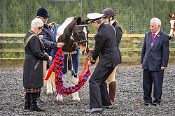 A poppy garland is removed from Sergeant Major 'Rocky' by Royal Navy Commodore Ian Shipperly and Lord Mayor of Plymouth Pauline Murphy (left) at the Royal Navy and Royal Marines Riding Stables at Bickleigh Barracks, Plymouth, during the first ever memorial service dedicated to horses killed or injured in conflict.