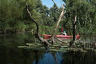 The Netherlands, Nederland Biesbosch. kanoën