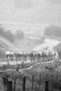 Tour of Britain 2013 - Stage 1 - Scotland - 210km