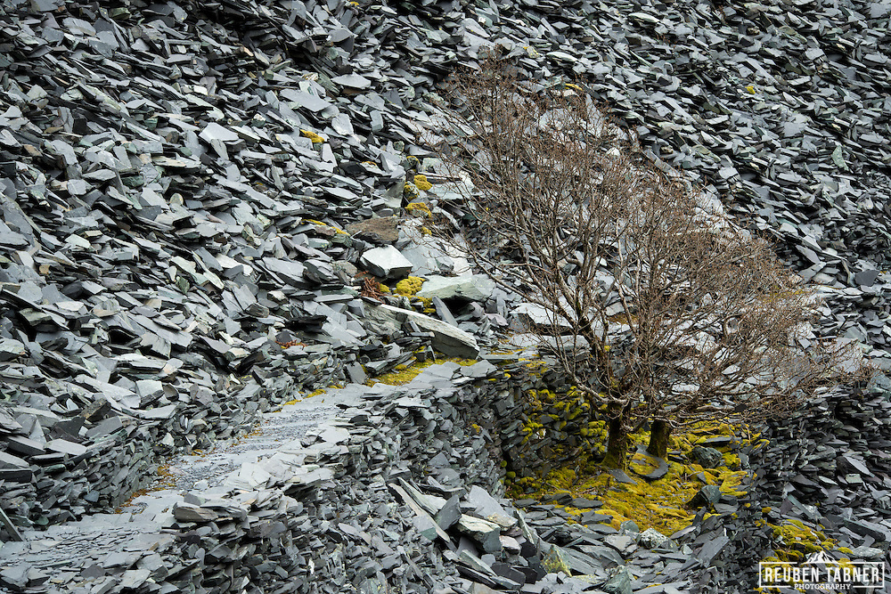 A path weaves its way to the Dinorwic Slate Quarry, Llanberis in north Wales.