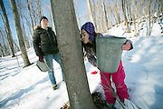 Anne Donegan and Elizabeth Hahn checking the sap, Russell Farm, Hinesburg, Vermont
