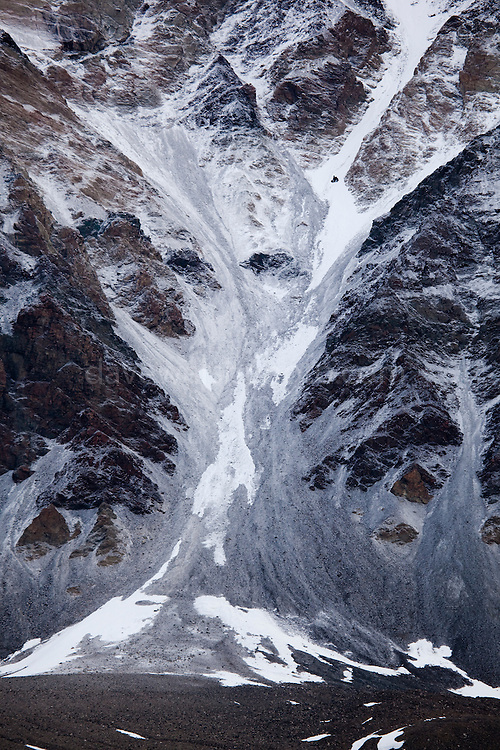 Tree-shaped landslide of gravel on a mountain in Dijmhna Sund, Nioghalvfjerdsfjorden, Greenland. Near 79 Glacier, at 79 north, from the deck of the Greenpeace ship Arctic Sunrise during an expedition to investigate the effects of climate change in the Arctic.