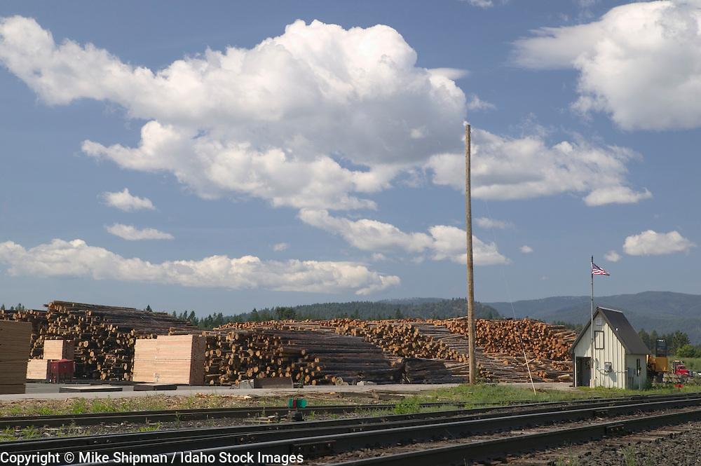 Riley Creek Lumber Company, log piles and cut lumber, truck loading station and railroad tracks, Laclede, Idaho, Bonner County, USA