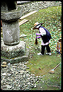 Groundskeeper in straw hat & purple gloves sweeps away leaves at Daiyuin-byo Shrine; Nikko. Japan