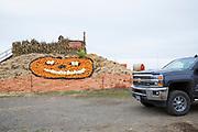 Pumkin Hill, del av aktivitsområdet hos Bauman Farms, Gervais, Oregon, USA<br /> Foto: Christina Sjögren