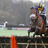 Ashbrittle and Conor O'Farrell winning the 1.50 race