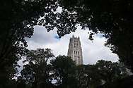 The tower of Riverside Church seen through the tree tops of Riverside Park