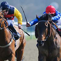 Lingfield 29th March