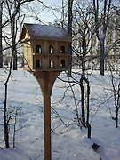 Saint Petersburg, Russia, Birdhouses are built to help the birds pass the harsh winters