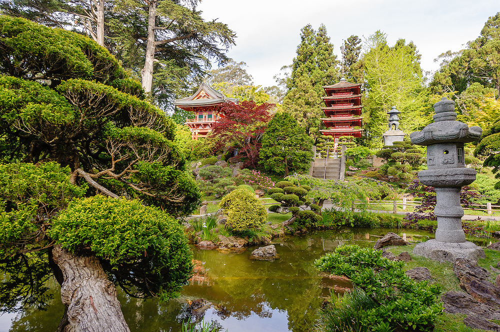 Japanese Tea Garden in San Francisco, California, in Golden Gate ...