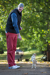 © licensed to London News Pictures. London, UK 04/11/2013. UK's tallest man, Neil Fingleton and Pickle the Chihuahua taking a walk in Green Park ahead of Discover Dogs event at Earls Court on 9 and 10 November, where people can meet more than 200 dog breeds. New statistics from the Kennel Club show some native breeds are rapidly declining as other fashionable breeds of foreign origin soar in number. The Kennel Club is reminding people to do their research before they buy a dog, and to not always opt for the popular or fashionable choice. Photo credit: Tolga Akmen/LNP
