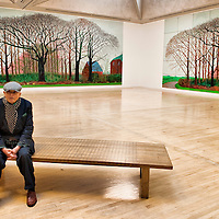 LONDON, ENGLAND - NOVEMBER 23:  Artist David Hockney attends a photocall as he donates a painting to Tate Britain on November 23, 2009 in London, England.  David Hockney donated the painting 'Bigger Trees Near Warter 2007' to Tate Gallery in 2008 along with two photographic images of the work....***Agreed Fee's Apply To All Image Use***.Marco Secchi /Xianpix. tel +44 (0) 771 7298571. e-mail ms@msecchi.com .www.marcosecchi.com
