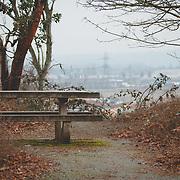 Overlook at Viewpoint Park - Northeast Tacoma, WA