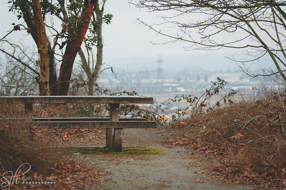 Overlook at Viewpoint Park - Northeast Tacoma, WA